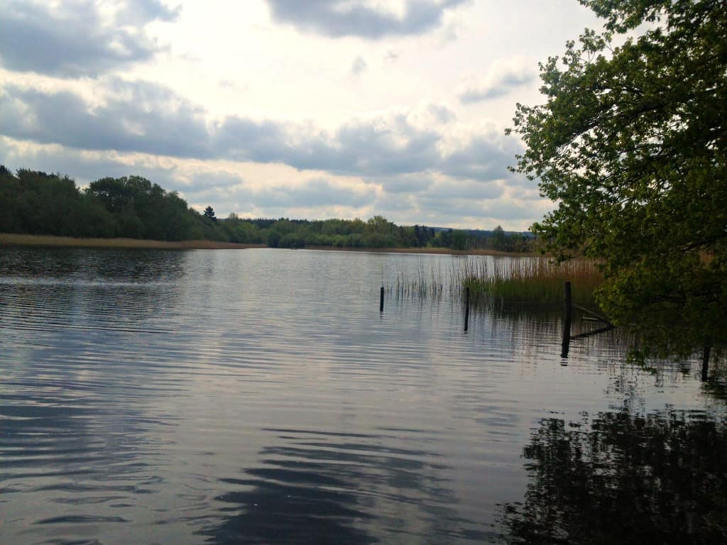 A Family Day Out at Frensham Ponds in Surrey My Travel Monkey