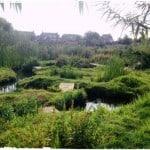 Airbnb Review: The Secret Valley Garden, Manchester
