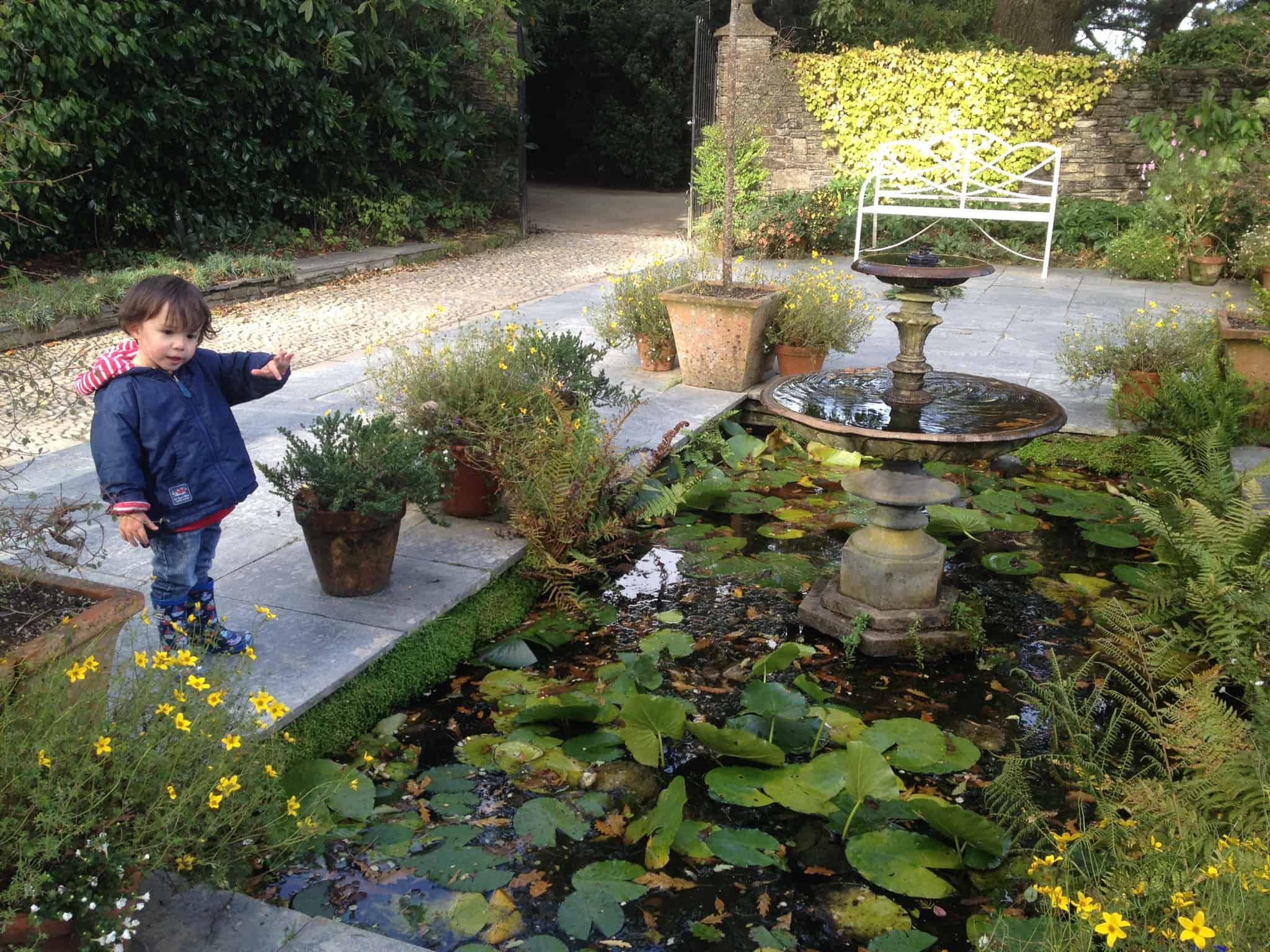 A Familly Day Out At The Lost Gardens of Heligan