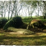 A Family Day Out At The Lost Gardens of Heligan, Cornwall