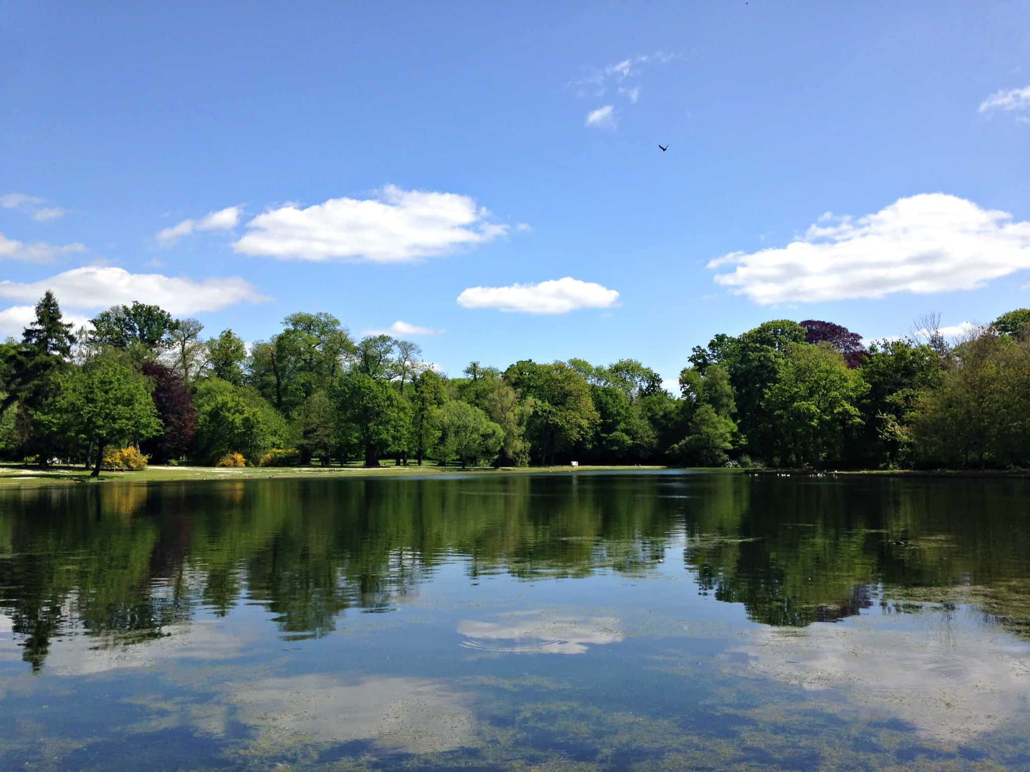 Claremont Landscape Gardens in Surrey | My Travel Monkey