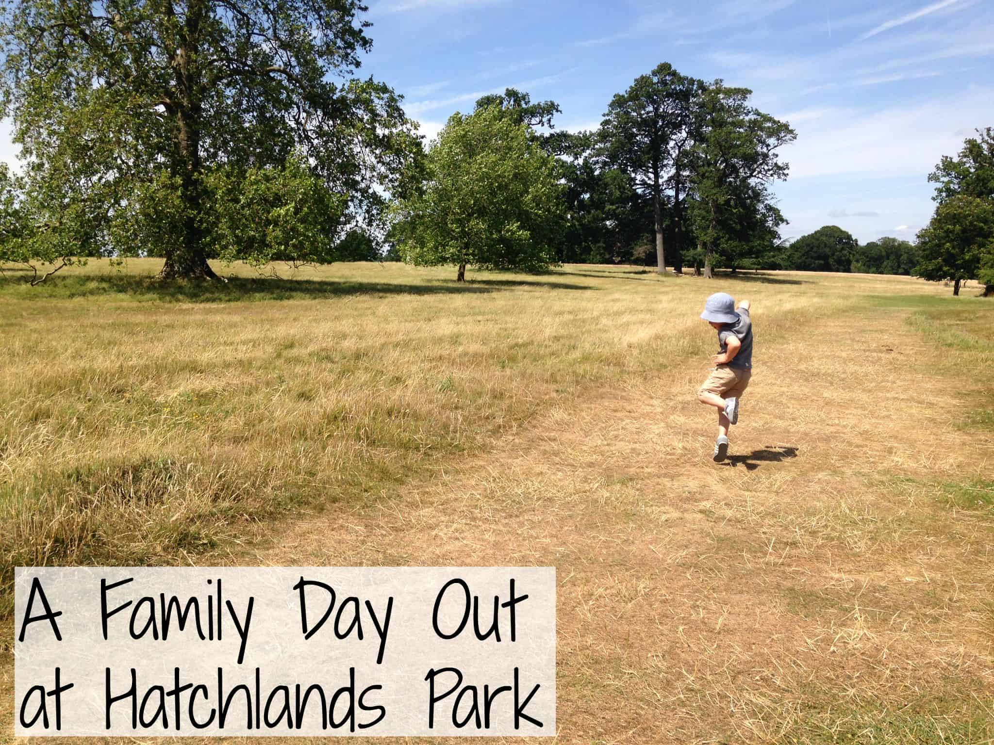 Hatchlands Park | My Travel Monkey