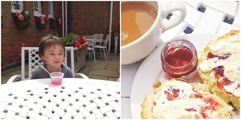 Cream tea at National Trust's Hatchlands Park My Travel Monkey