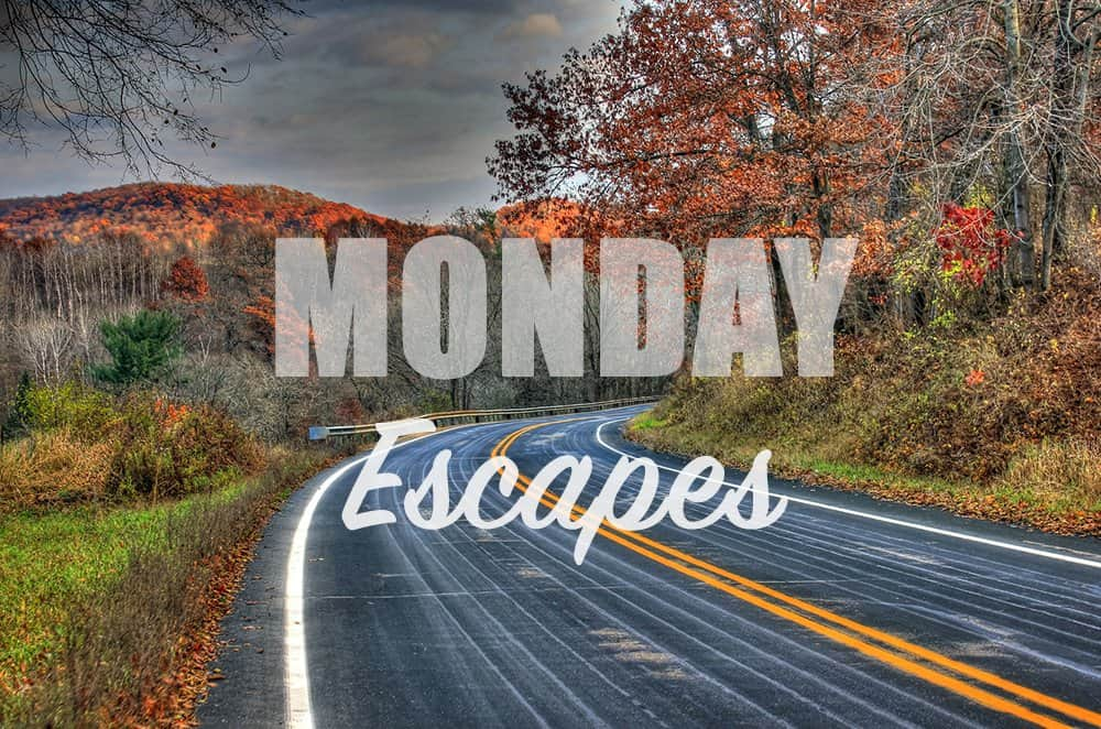 Monday Escapes #16