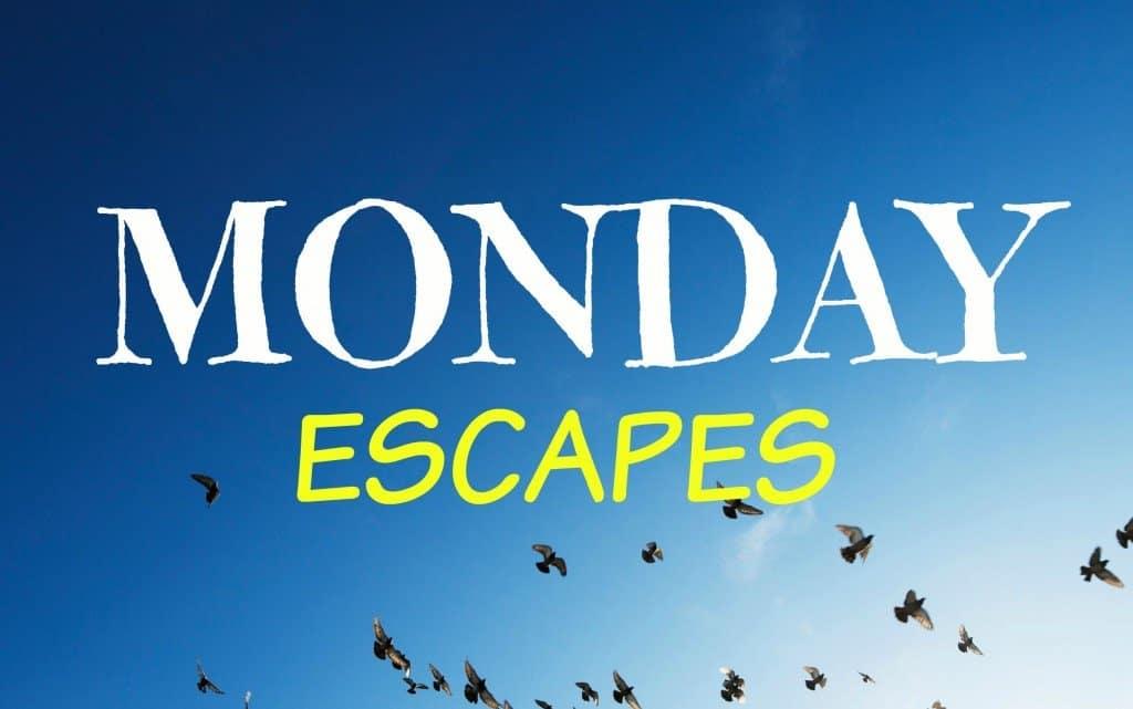 Monday Escapes #18