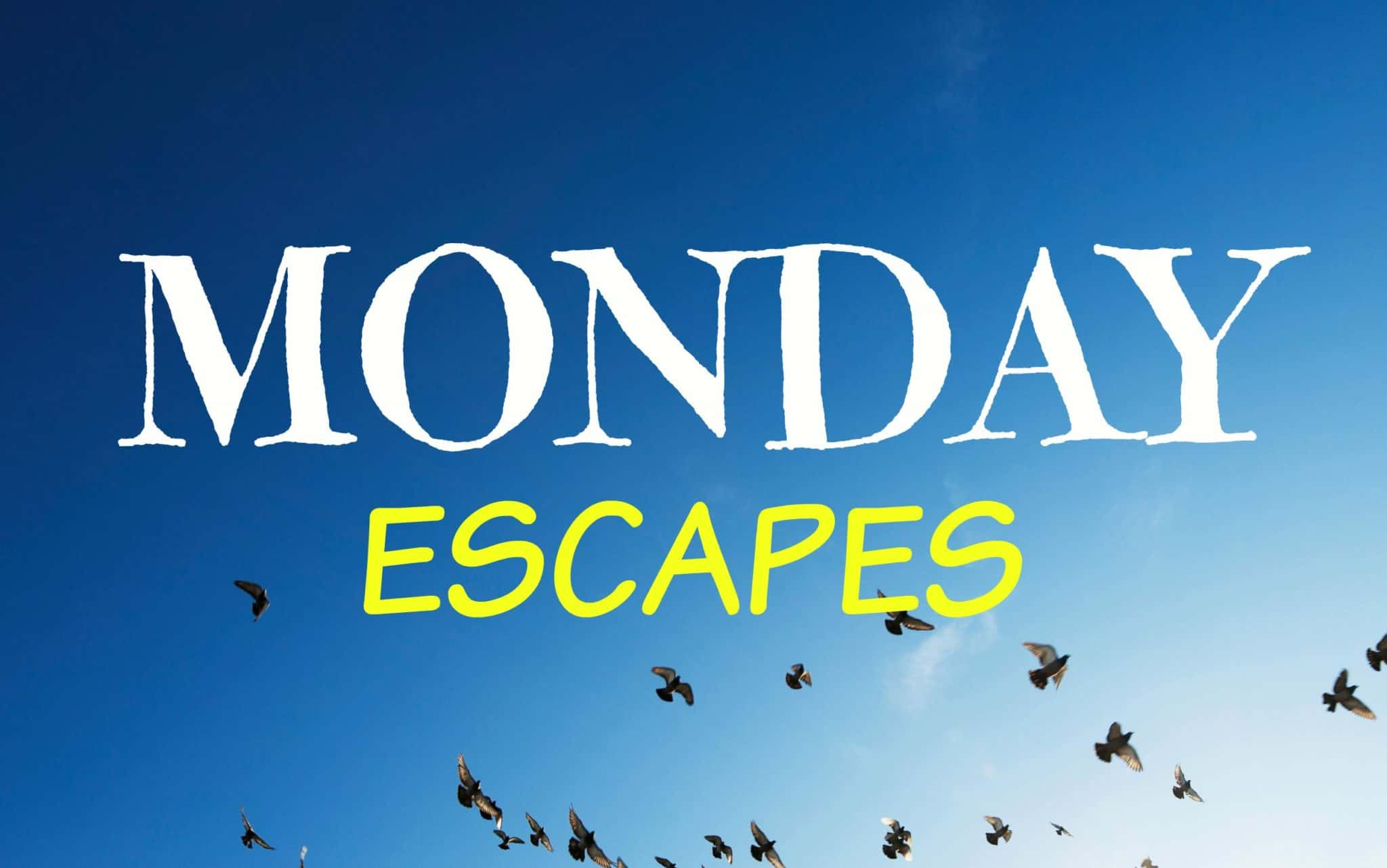Monday Escapes #18