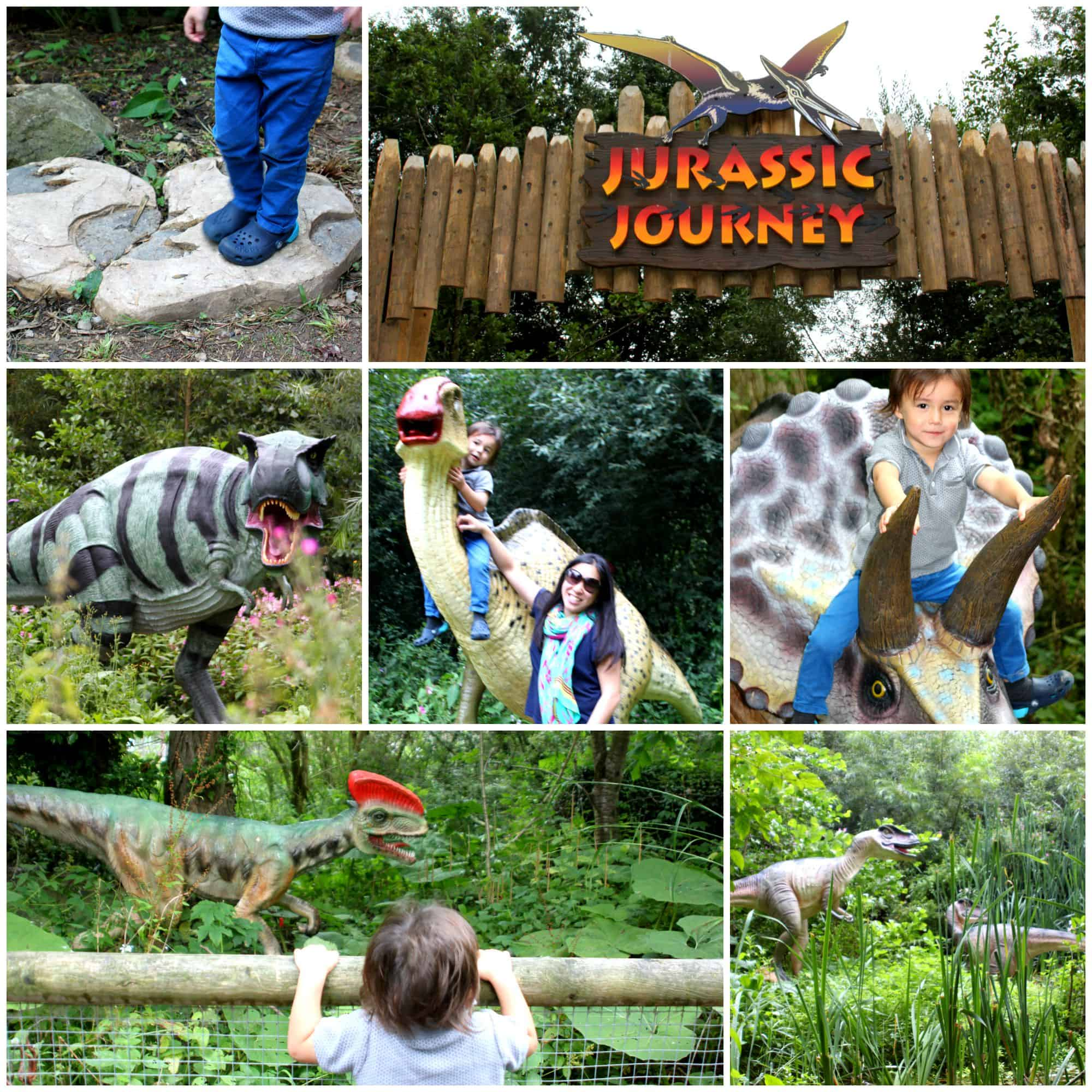 Family Fun at Birdland Park & Gardens in Cotswolds My Travel Monkey