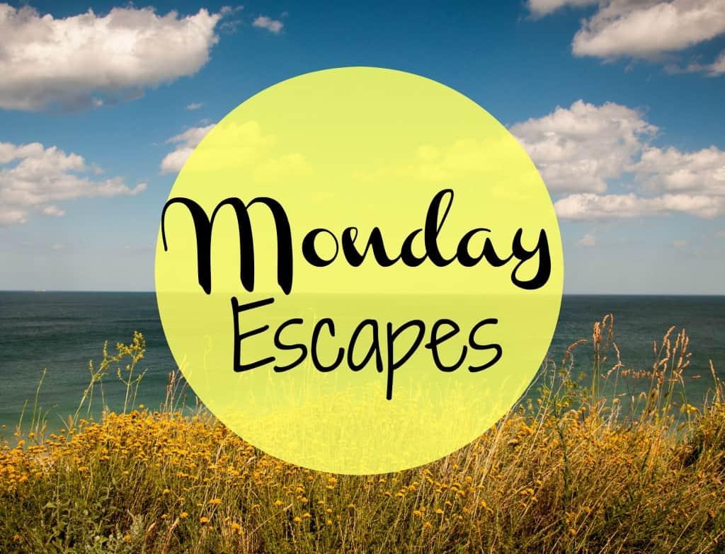 MondayEscapes#19