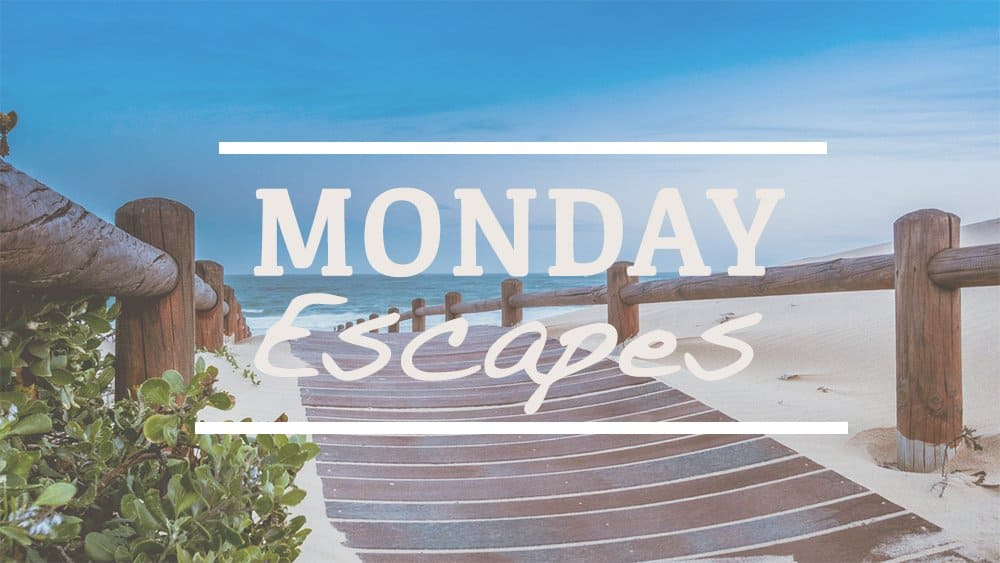 Monday Escapes #28