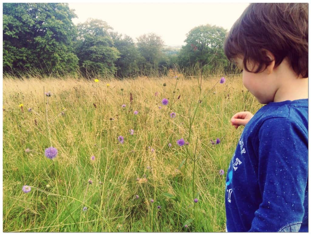 Some of the Best Places to Visit In England With Kids