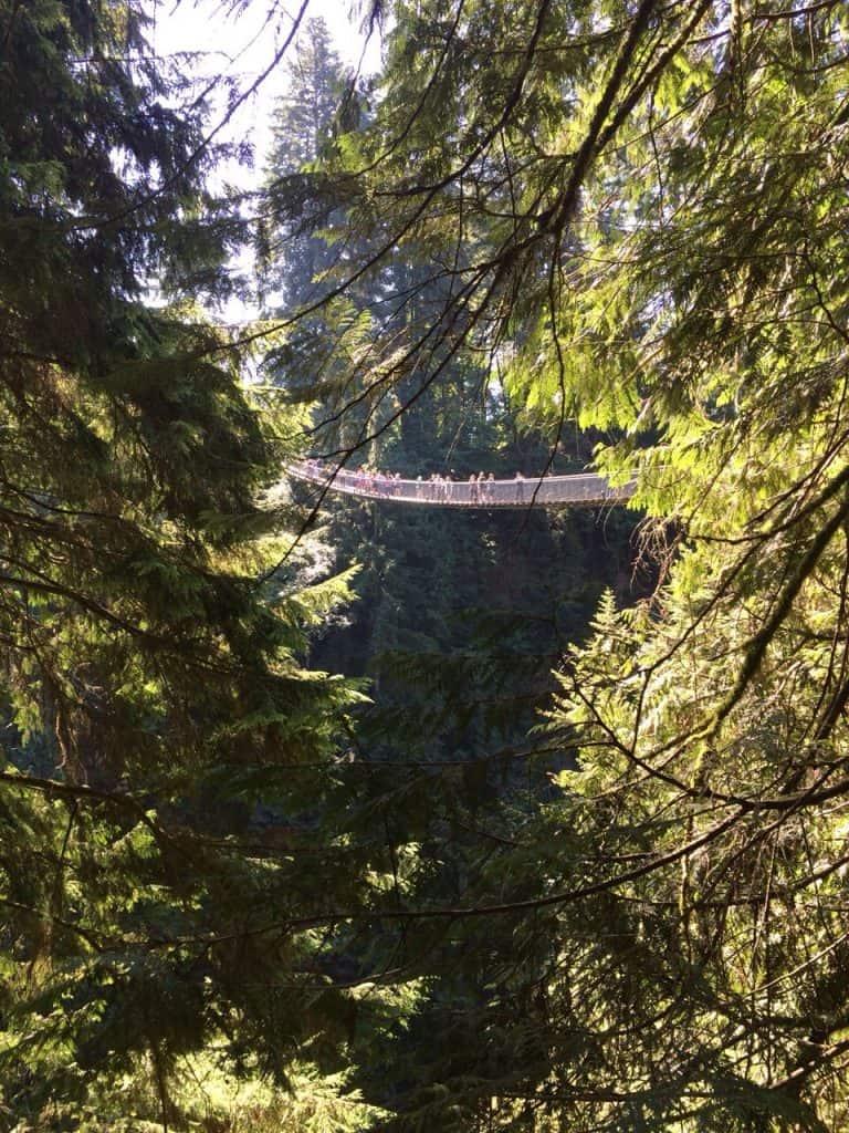Capilano Suspension Bridge Park | My Travel Monkey