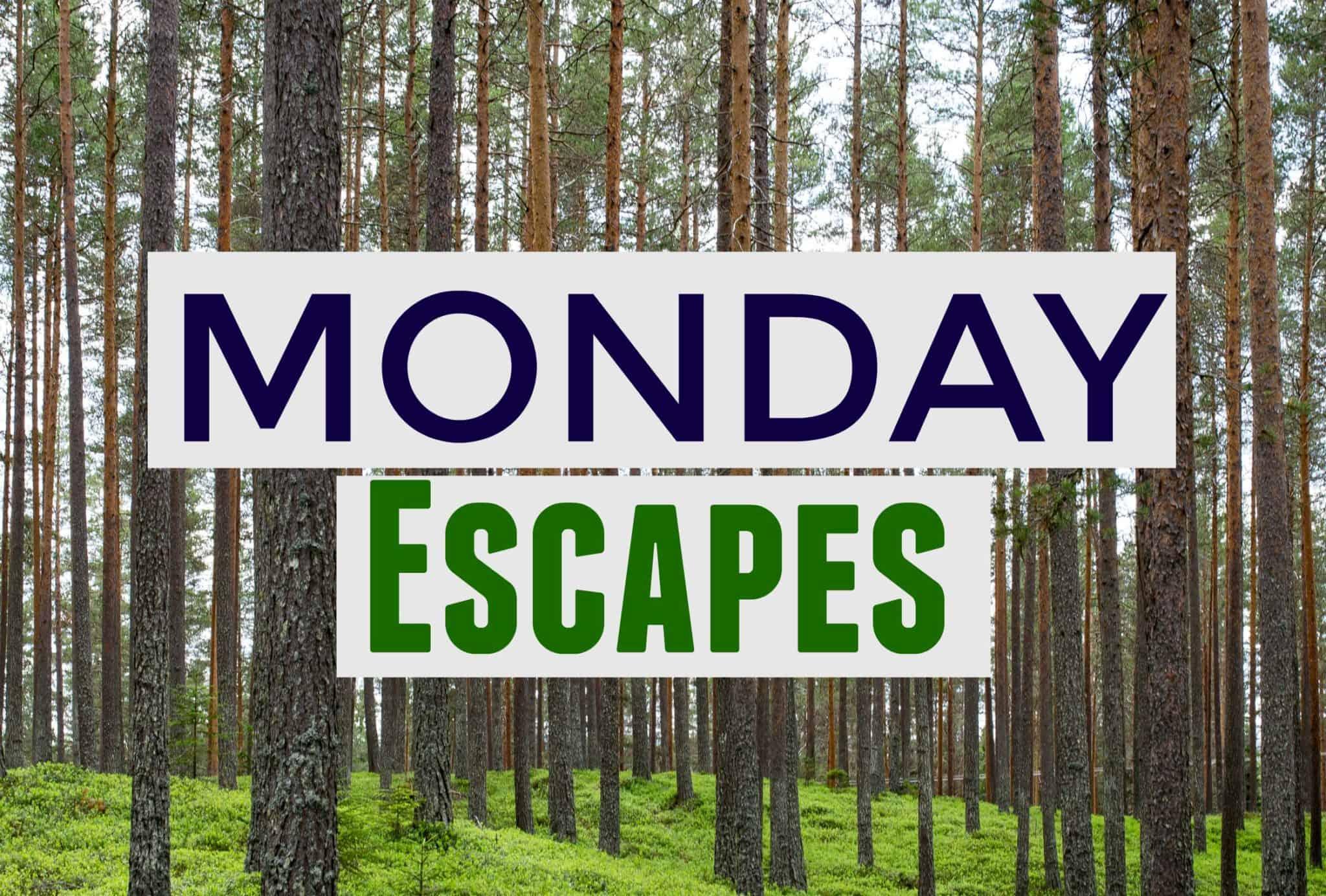 MondayEscapes #42