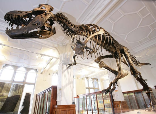 18 Unmissable European Museums To Visit With Kids