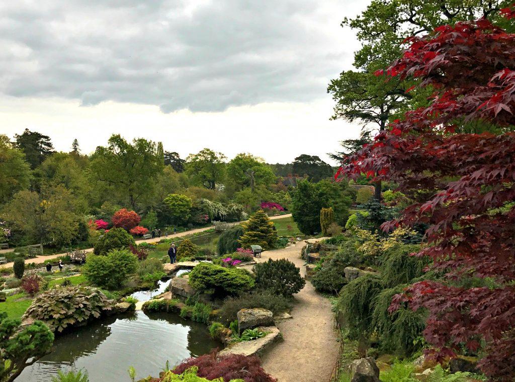 Exploring RHS Gardens, Wisley in Surrey