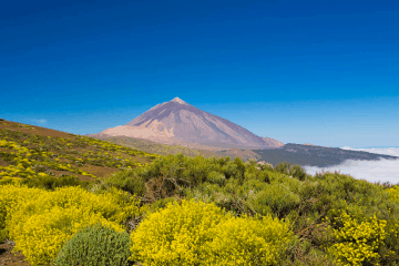 Six Reasons To Visit Tenerife