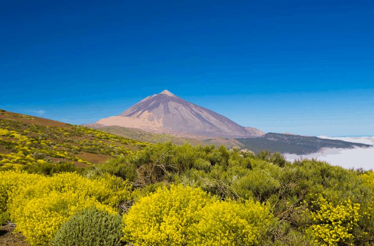 Six Reasons To Visit Tenerife | My Travel Monkey