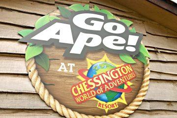 A Treetop Adventure With Go Ape Junior at Chessington World Of Adventures Resort