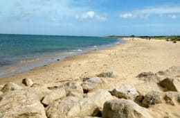 20 Things To Do in Dorset With Kids