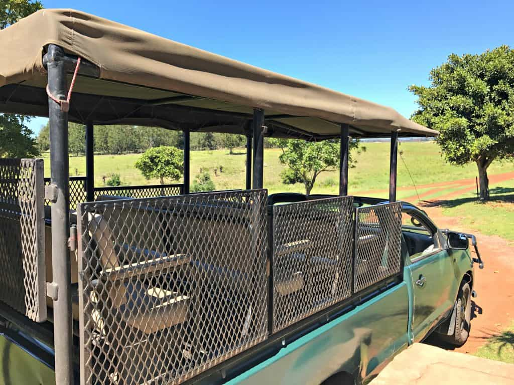 A Safari With Kids at Plettenberg Bay Game Reserve | My Travel Monkey