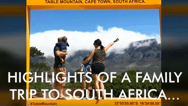 Highlights of A Family Trip To South Africa
