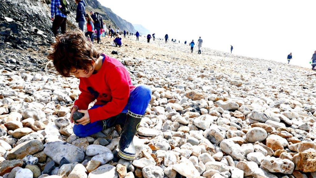Fossil Hunting With Kids | My Travel Monkey