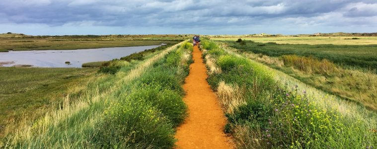 The Top Things To Do With Kids Norfolk | My Travel Monkey