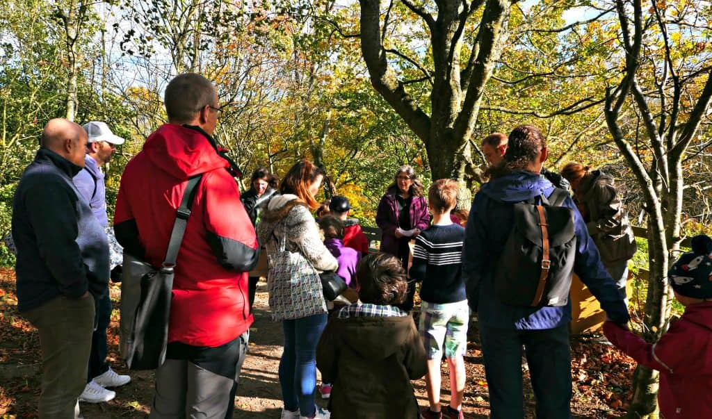 Stargazing in the UK: North Pennines Festival at Bowlees | Travel Monkey