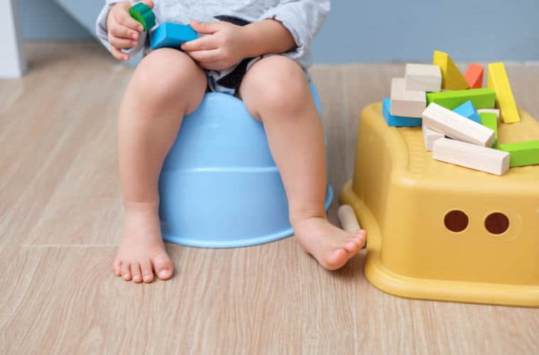 The Best Travel Potty Seats For Toddlers | My Travel Monkey