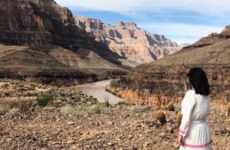 The November Digest: Grand Canyon Rocks | My Travel Monkey