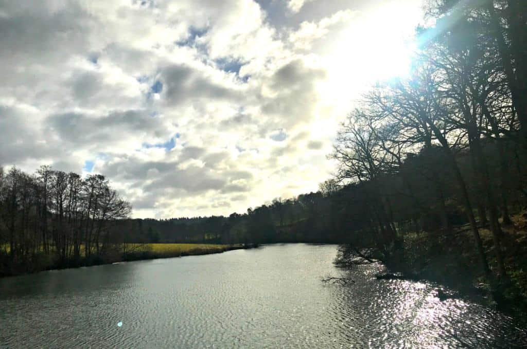 A Family Walk At Winkworth Arboretum National Trust