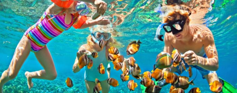 Watersport Activities: Snorkelling With Kids   My Travel Monkey