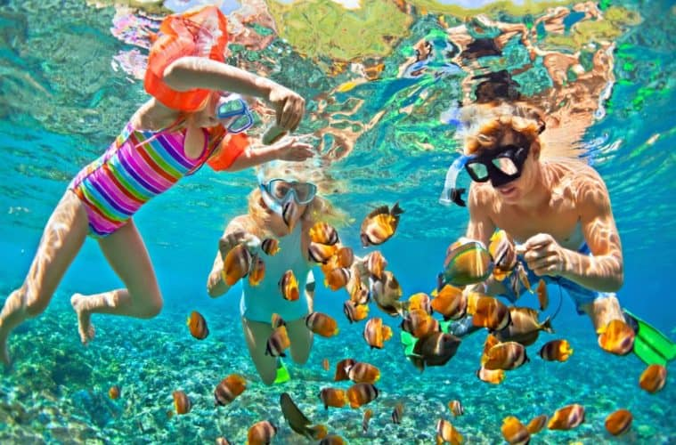 Watersport Activities: Snorkelling With Kids | My Travel Monkey