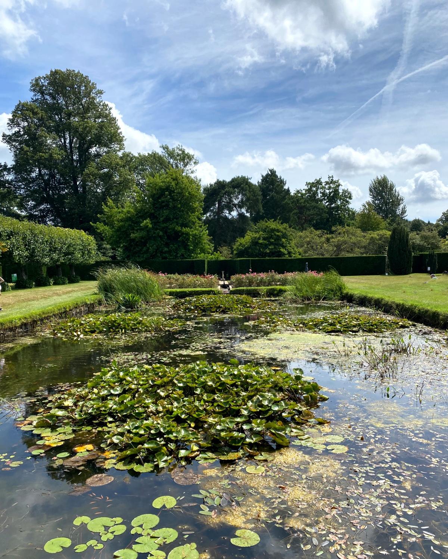 The lily pond at Bateman |  My travel monkey