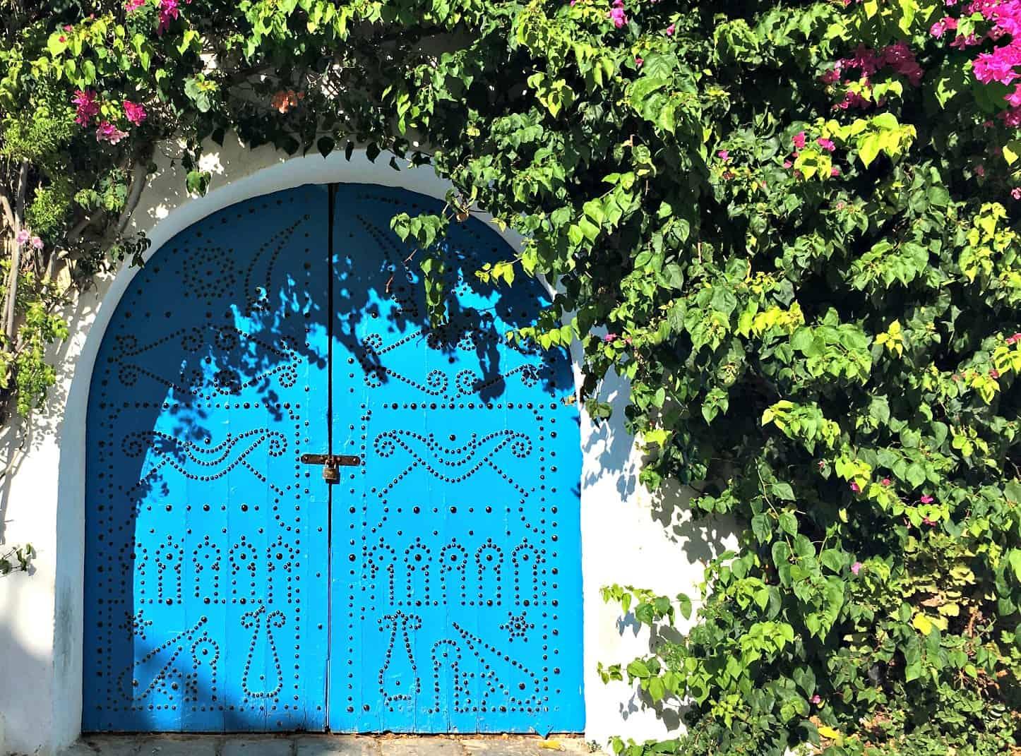 Sidi Bou Said Door | My Travel Monkey