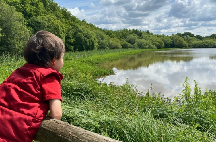 A Guide To Epsom Common | My Travel Monkey
