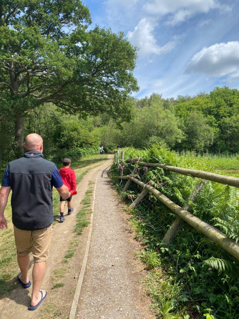 Epsom Common Walks | My Travel Monkey